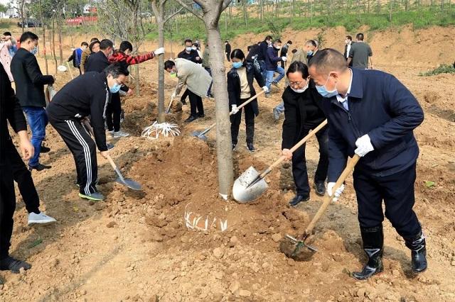 春添新绿,市领导参加春季义务植树活动